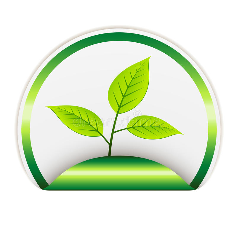 Download Bio sticker stock vector. Illustration of label, herbal - 24112020