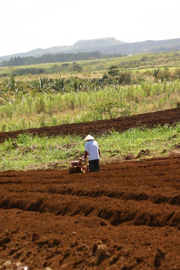 Biobauer, der seins Felder pflügt  lizenzfreie stockfotografie