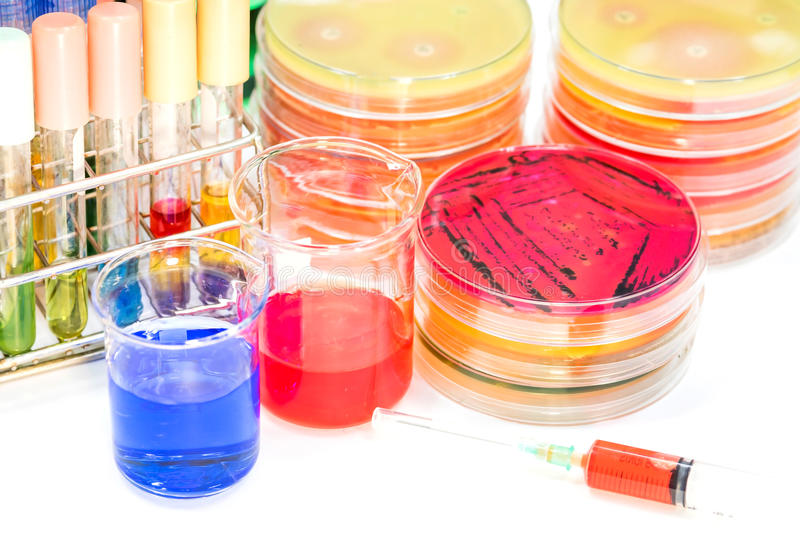 Biochem test kit and media and tube blood colection for identified pathogen in microbiology room. royalty free stock photo