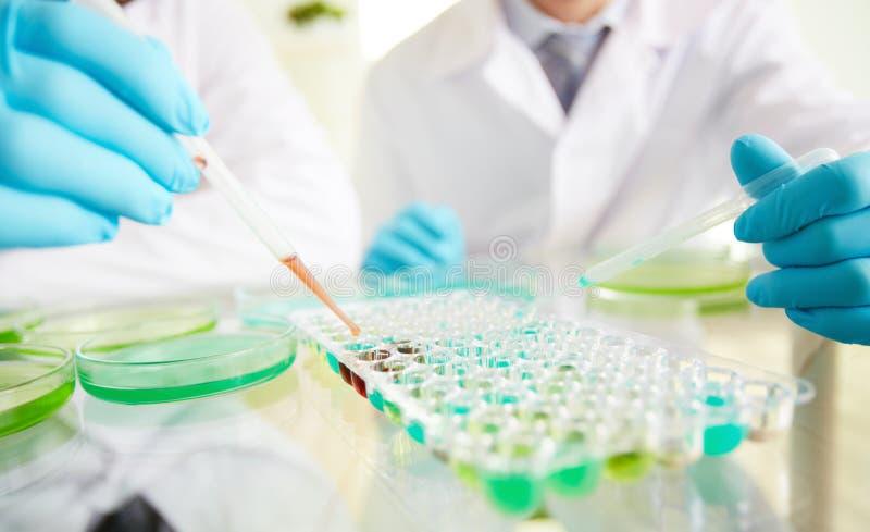 Biochemical forskning fotografering för bildbyråer