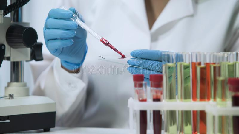Biochemical research of blood, lab assistant doing microbiological analysis royalty free stock image