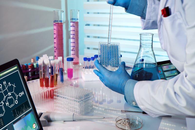 Biochemical tekniker som arbetar med microplate i ett laboratorium exp arkivbilder