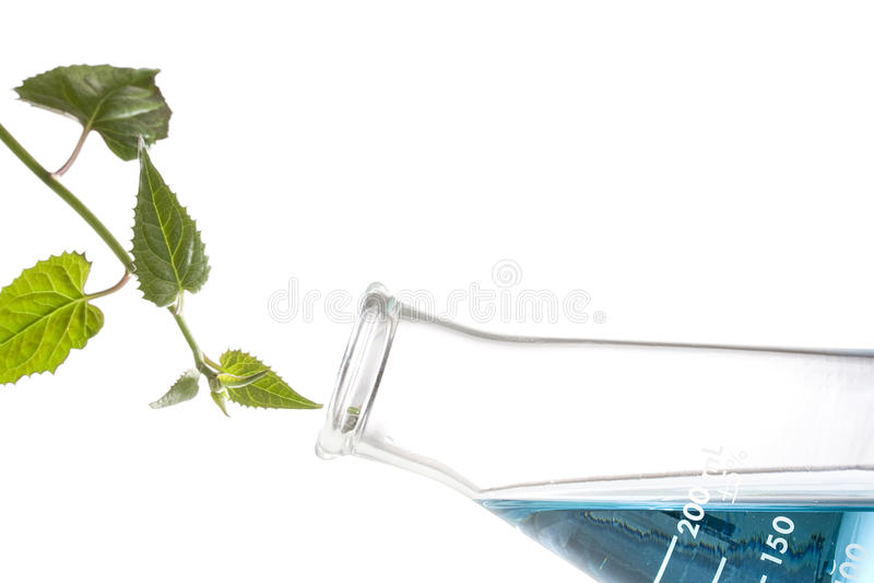 biochemistry royaltyfria foton