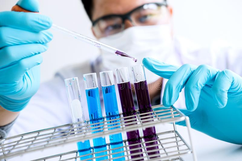 Biochemistry laboratory research, Chemist is analyzing sample in royalty free stock photo