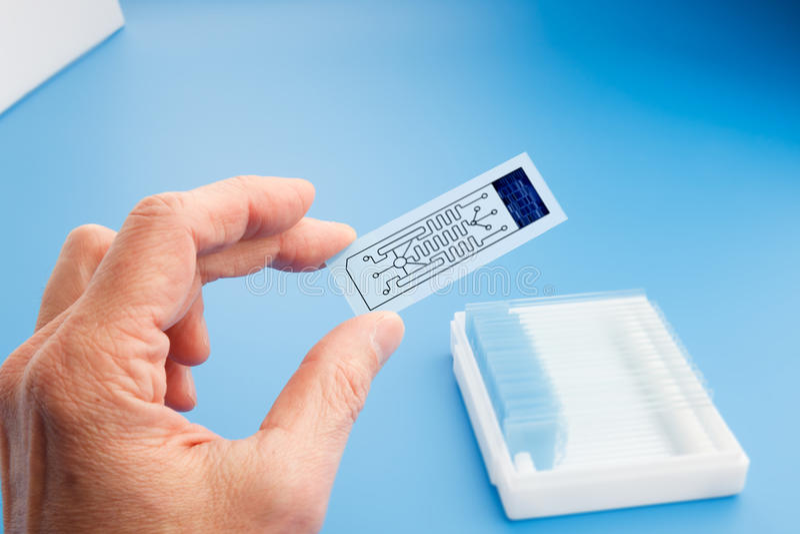 Biochip para identificar as proteínas, laboratório na microplaqueta imagens de stock royalty free