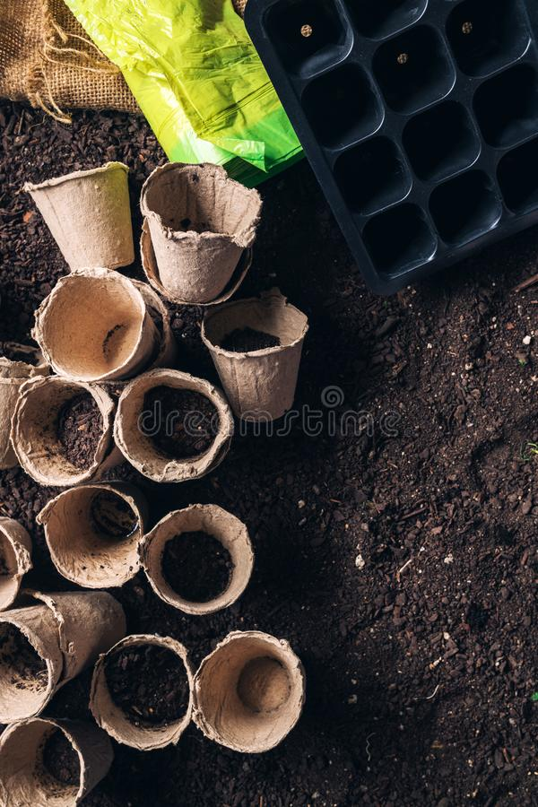 Biodegradable peat pot on greenhouse compost humus soil. Organic farming and cultivation stock image