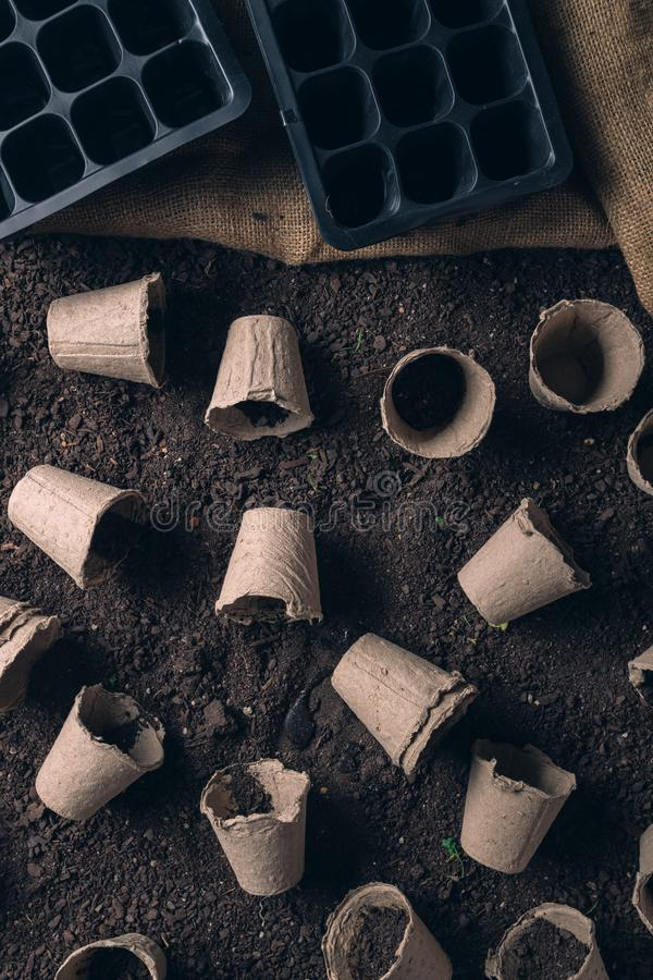 Biodegradable peat pot on greenhouse compost humus soil. Organic farming and cultivation royalty free stock photography