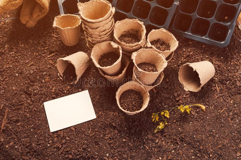 Biodegradable peat pots and business card mock up. For organic farming food production on fertile soil ground stock image