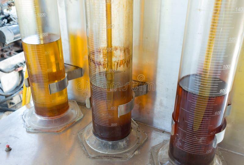 Biodiesel derivado da palma de óleo fotos de stock royalty free