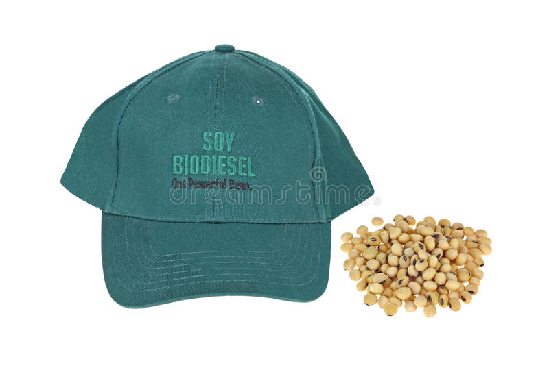 Biodiesel do feijão de soja imagens de stock