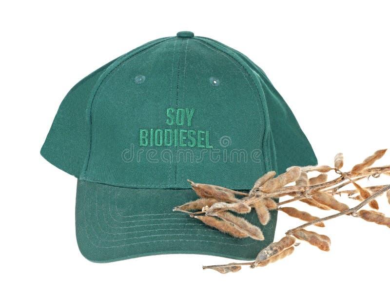 Biodiesel do feijão de soja fotografia de stock