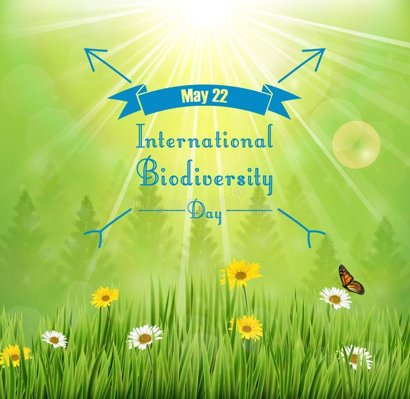 Biodiversity background with flowers in meadow and pine trees royalty free illustration