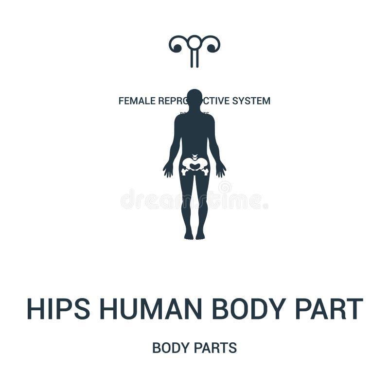 biodra ciała ludzkiego części ikony wektor od części ciałych inkasowych Cienka kreskowa biodra ciała ludzkiego części konturu iko royalty ilustracja