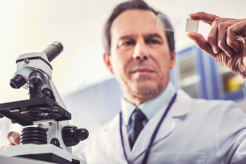 Bioengineer выполняя родительский тест в лаборатории стоковые фото