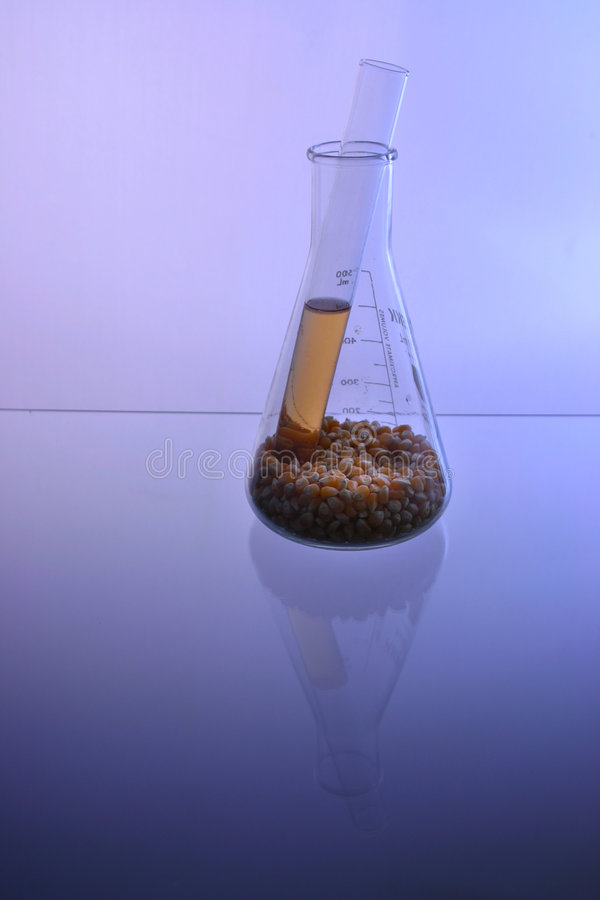 Download BioFuel 5 stock photo. Image of gold, fluid, experiment - 1407340