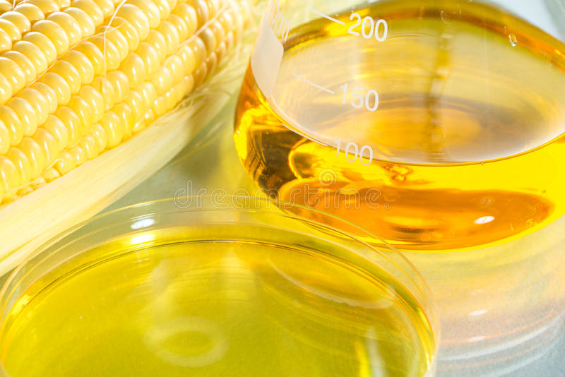 Biofuel or Corn Syrup sweetcorn. Biofuel or Corn Syrup, gasoline, energy, environmentalist royalty free stock photography