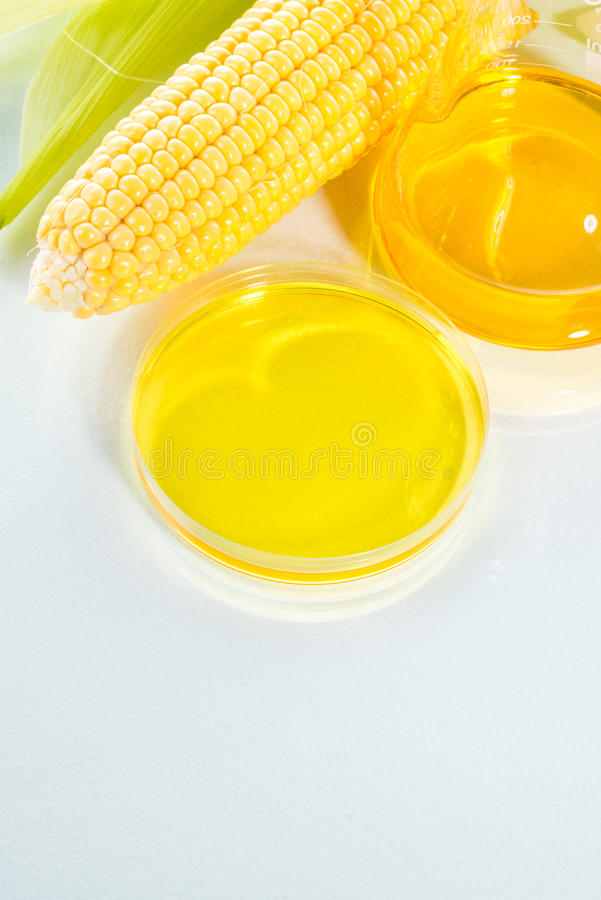Biofuel or Corn Syrup sweetcorn. Biofuel or Corn Syrup, gasoline, energy, environmentalist stock images