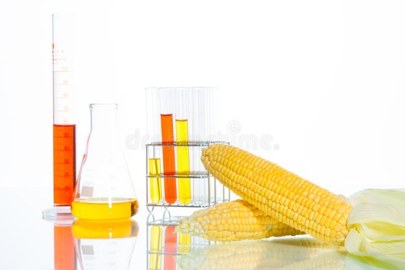 Biofuel of Glucosestroop royalty-vrije stock fotografie