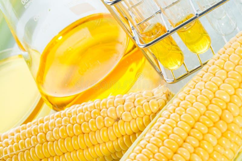 Biofuel of Glucosestroopsuikermaïs royalty-vrije stock afbeelding
