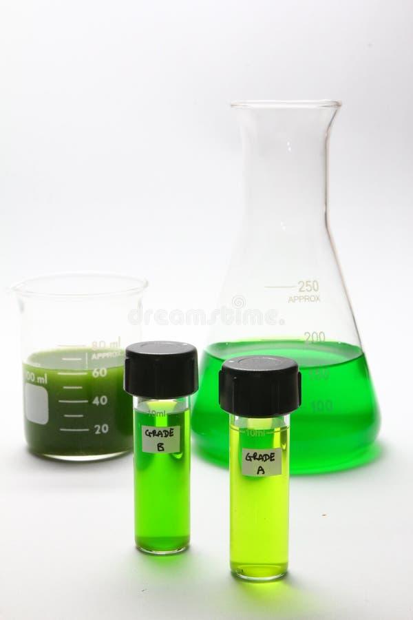 Biofuel van algen stock foto's