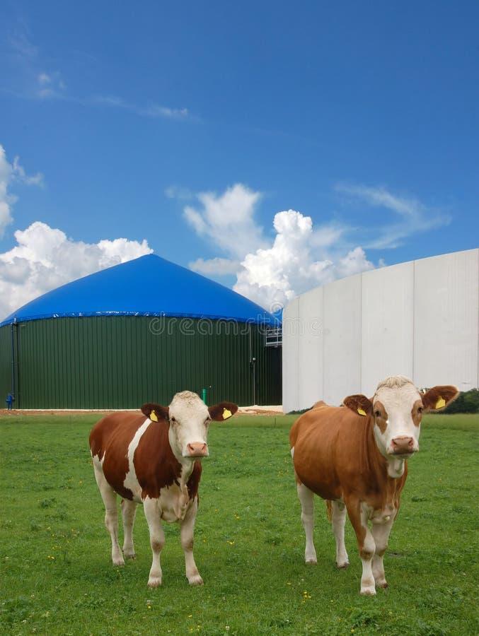 Biogasenergie lizenzfreie stockfotos