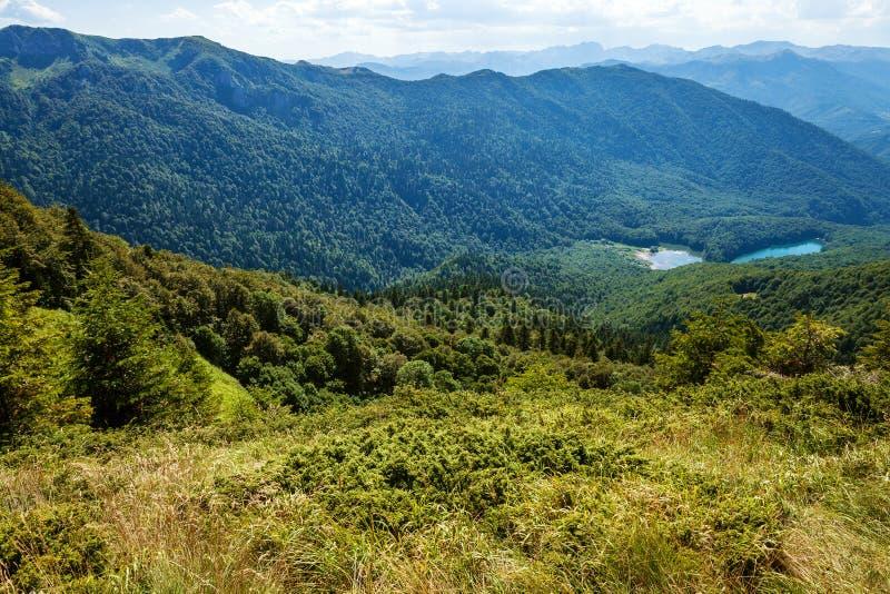 Biogradska Gora park narodowy obraz stock