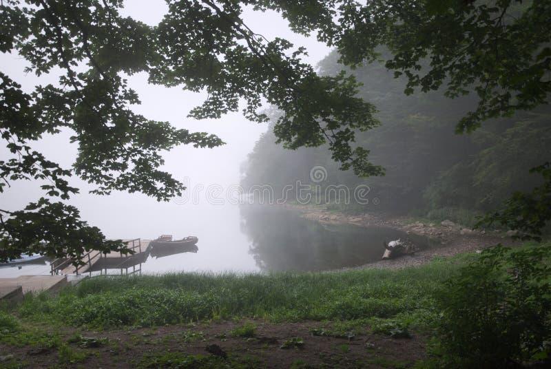 Biogradsko jezero zdjęcia royalty free