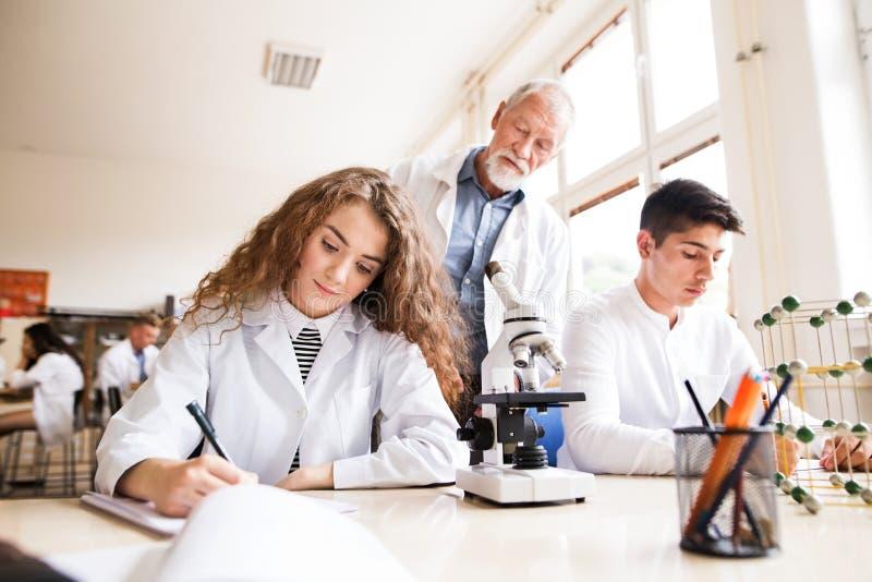 Biología de enseñanza del profesor mayor a los estudiantes de la High School secundaria foto de archivo libre de regalías