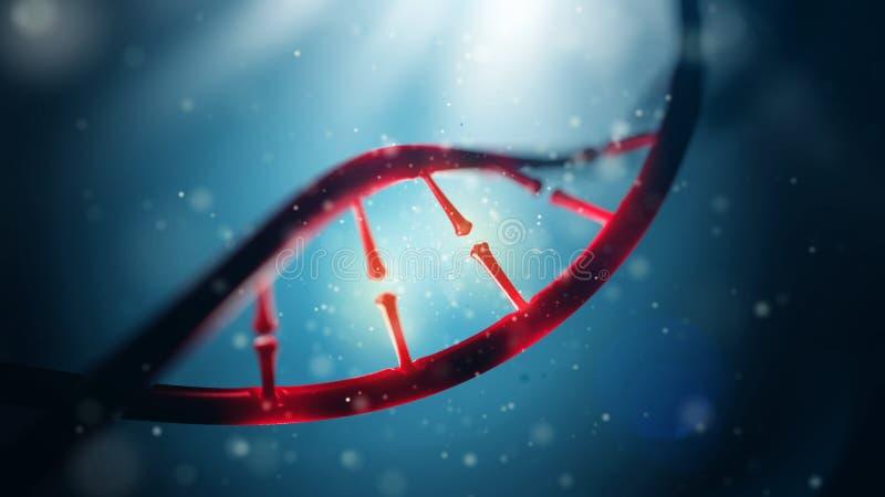 Biologi, vetenskap och läkarundersökningteknologibegrepp Closeup av den mänskliga genom för begrepp royaltyfri foto