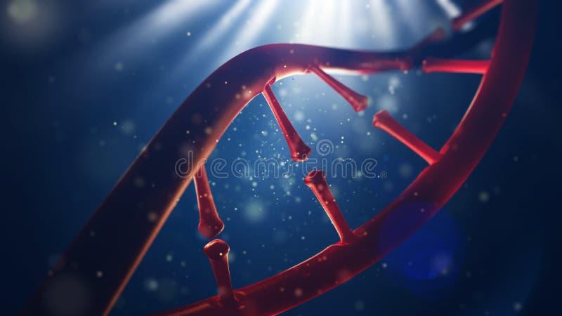 Biologi, vetenskap och läkarundersökningteknologibegrepp Closeup av den mänskliga genom för begrepp royaltyfri bild