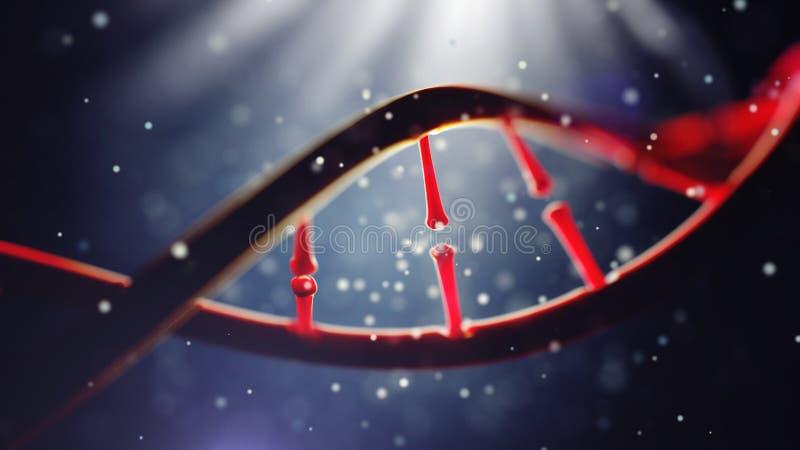 Biologi, vetenskap och läkarundersökningteknologibegrepp Closeup av den mänskliga genom för begrepp royaltyfria bilder