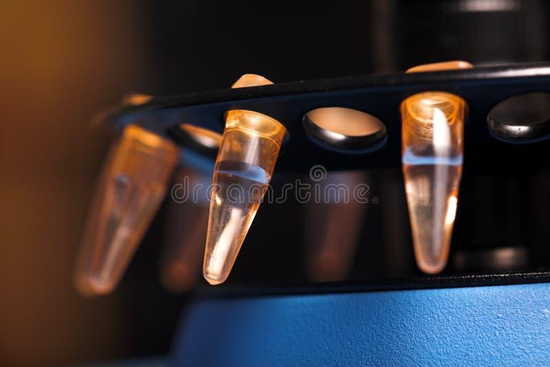 Biologia molecolare fotografia stock