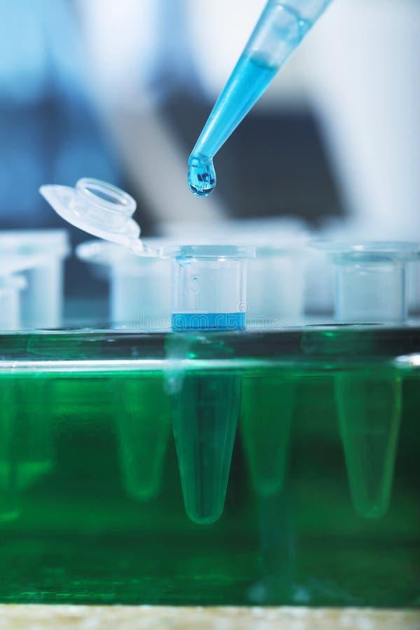 Biologia molecolare fotografia stock libera da diritti