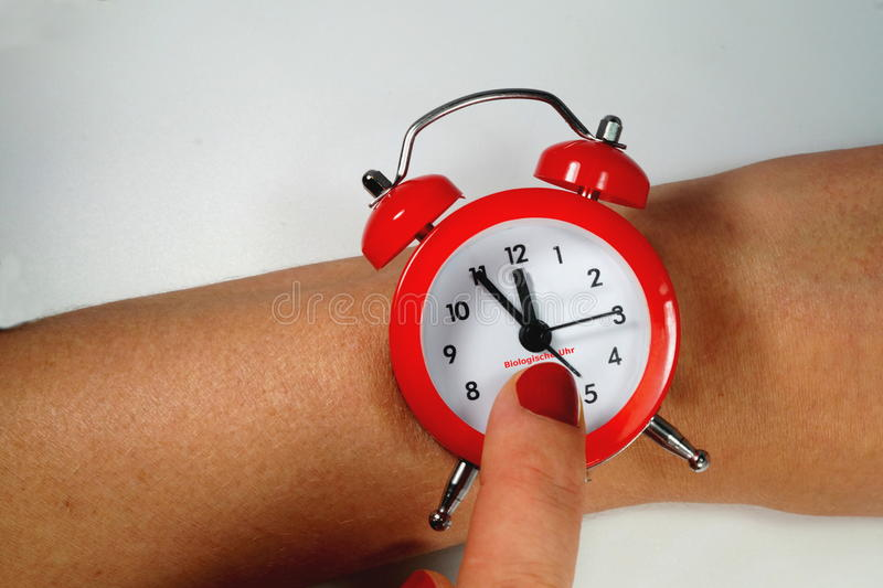 Biological clock. In a woman royalty free stock photos