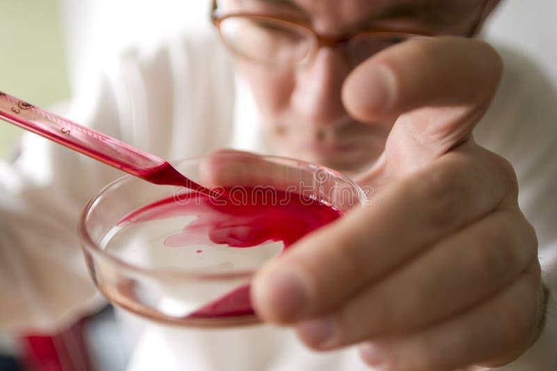 Download Biological test stock photo. Image of blood, chemist, biology - 3382694