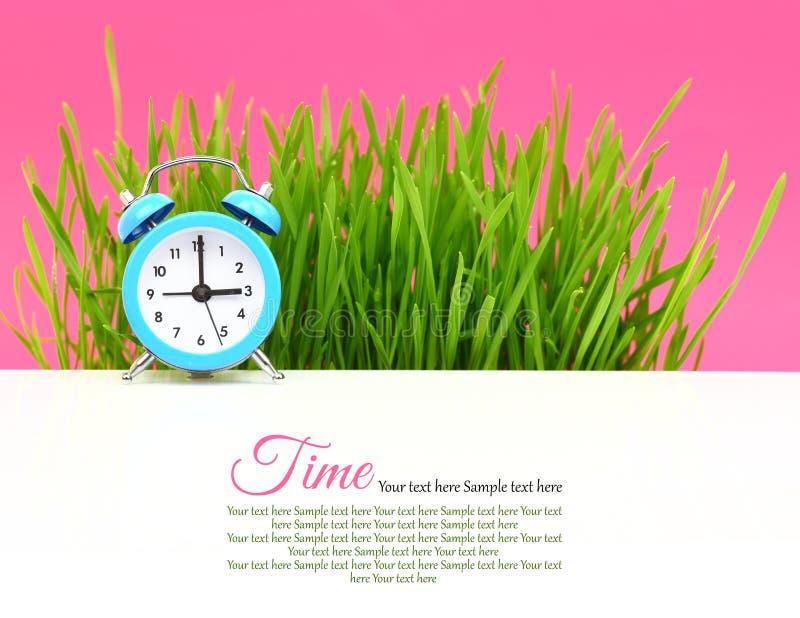 Biologiczny zegar obraz stock