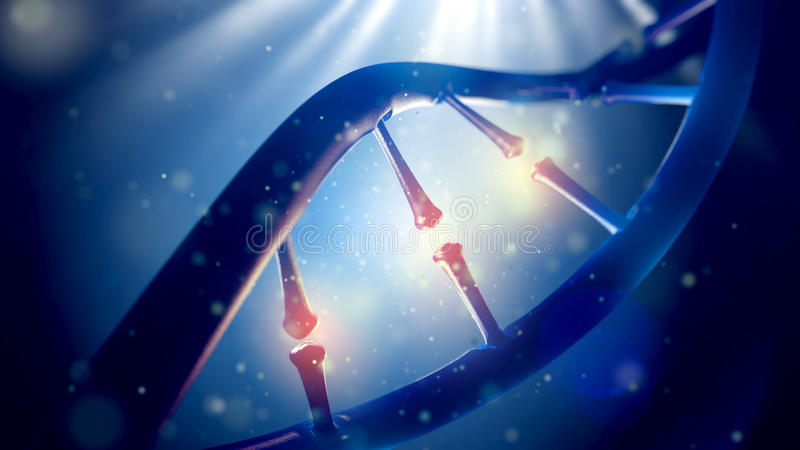 Biologie, wetenschap en medisch technologieconcept Close-up van concepten menselijk genoom stock foto