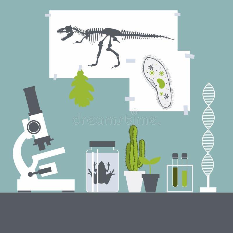Biologieklasse Kikker, installaties, microscoop Vector illustratie stock illustratie