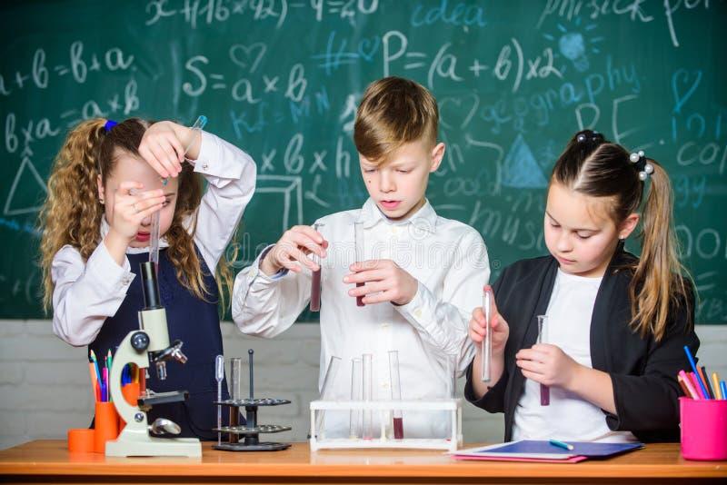 Biologiemateriaal Biologieonderwijs studenten die biologieexperimenten met microscoop in laboratorium doen Het kleine jonge geitj royalty-vrije stock afbeeldingen