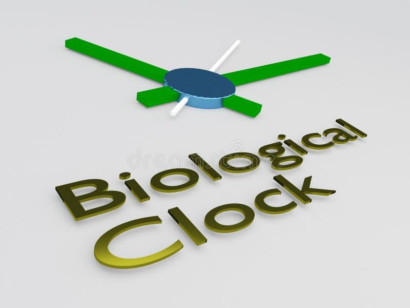 Biologisch Klokconcept vector illustratie