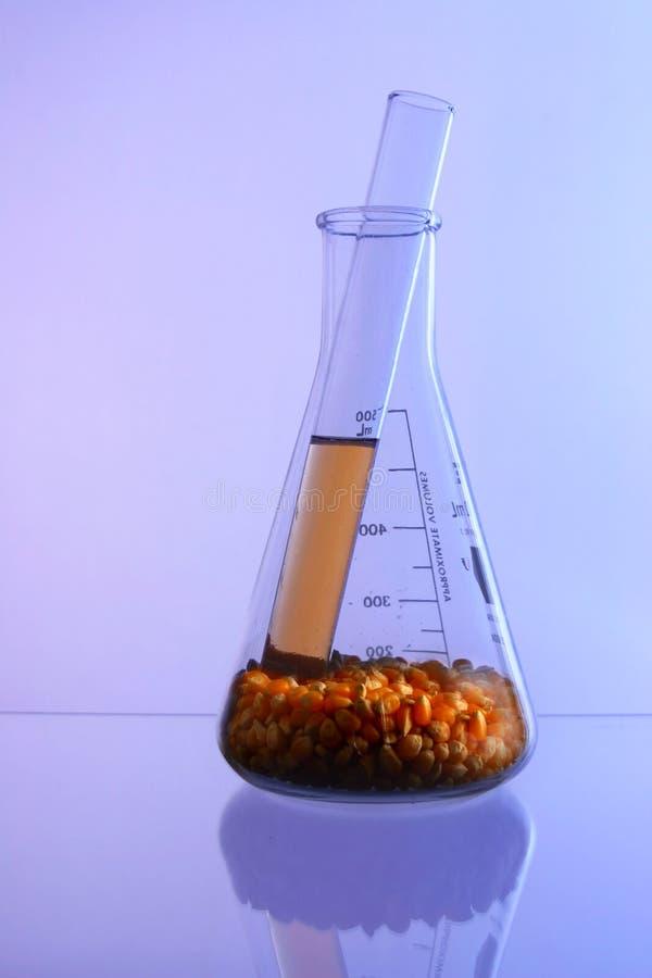 Biologischer Brennstoff 3 stockfoto