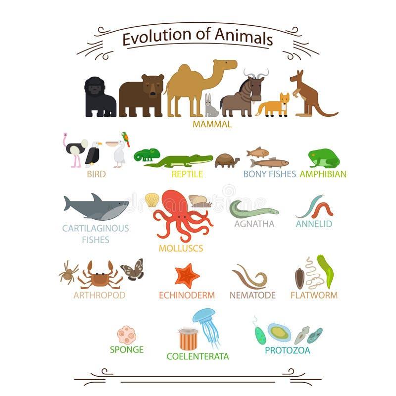 Biologiska evolutiondjur royaltyfri illustrationer