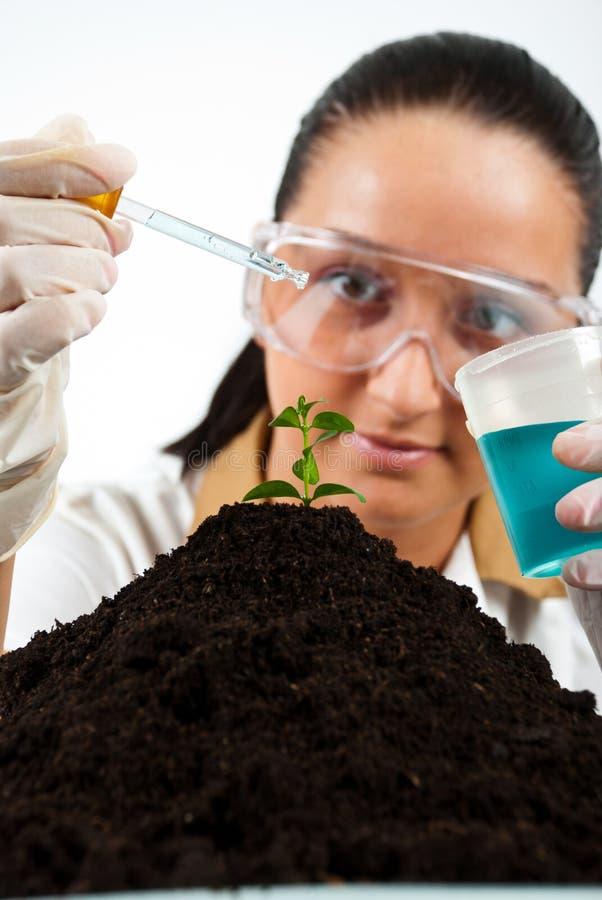 Biologist woman stock photo