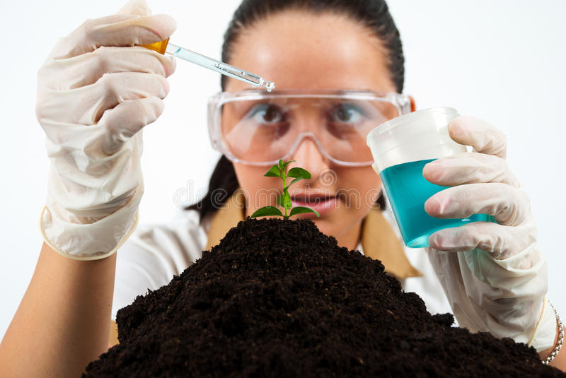 Biologist at work stock images