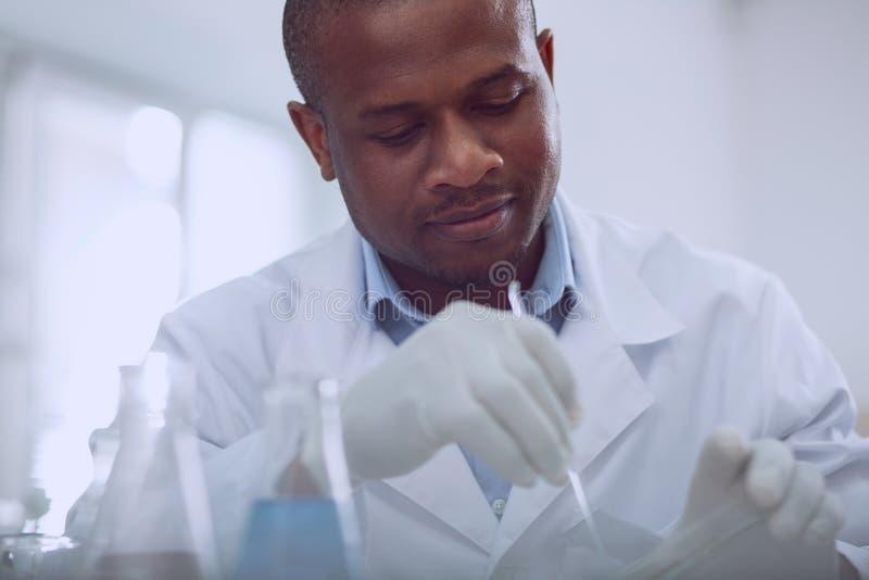 Biologiste afro-américain déterminé travaillant avec des graines images libres de droits