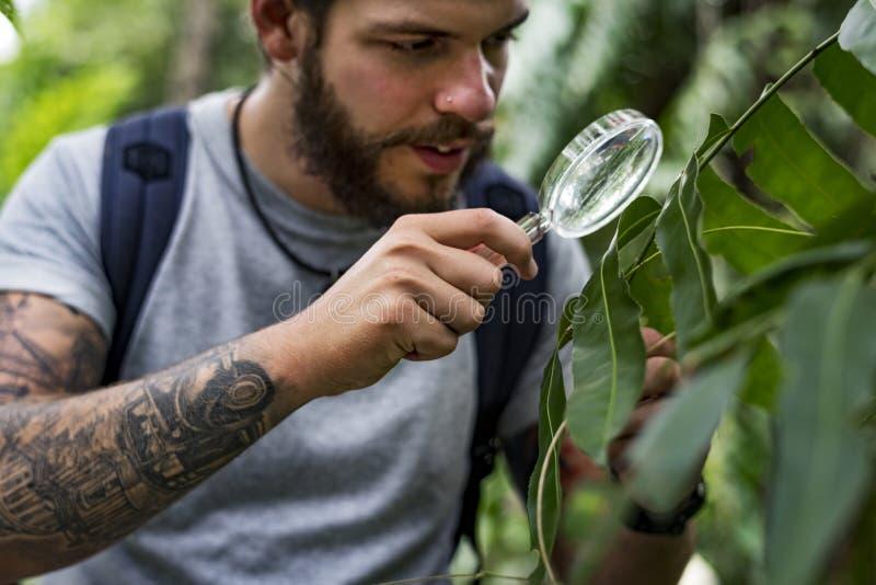 Biologiste dans une forêt photos stock
