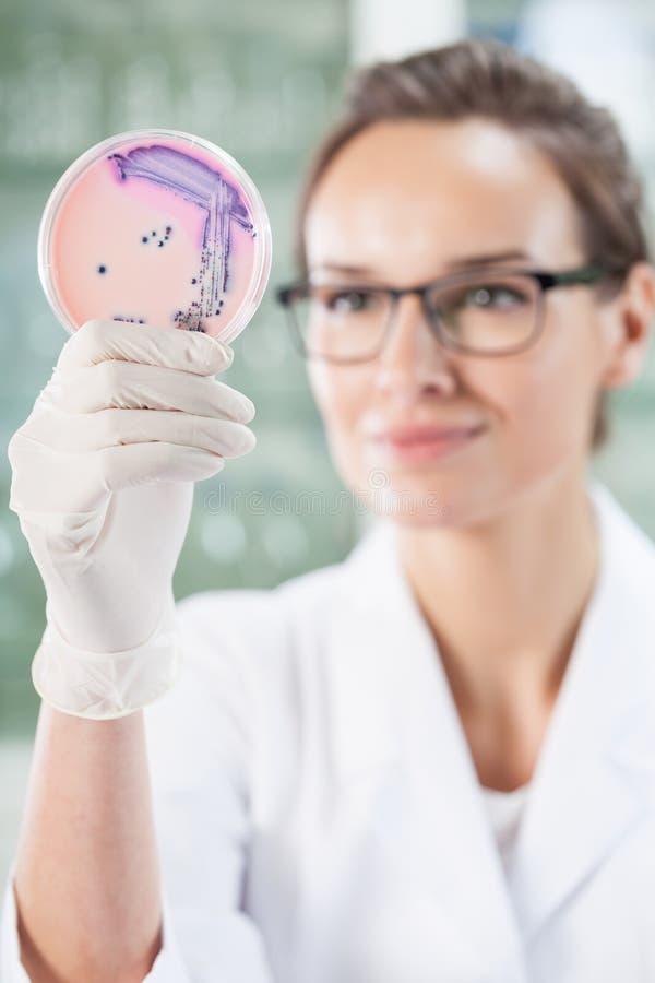 Biologiste féminin travaillant au laboratoire photo libre de droits