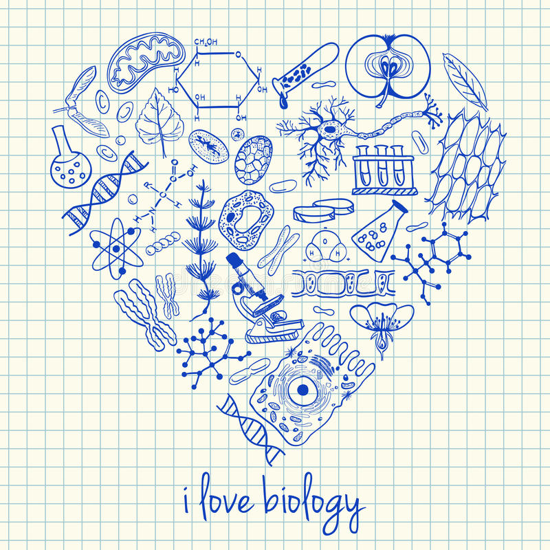 Free Biology Drawings In Heart Shape Stock Photos - 33012383