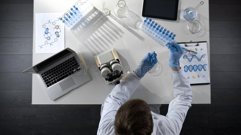 Biology student working with microscope, preparing sample to study, top view royalty free stock photos