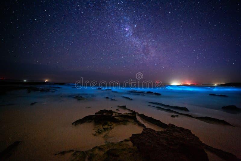 Bioluninescentie en sterren in Australië royalty-vrije stock fotografie